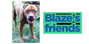 BLAZE-FOR-SITEsm4