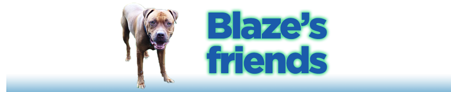 BLAZE-FOR-SITE_WIDE