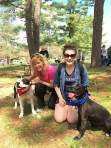 Champ and Suki joined in at the SPCA of Westchester's Annual Walkathon to help raise money for their former home. Champ & Suki have both been adopted!