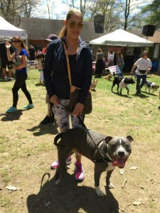 Mack came back to participate in the SPCA of Westchester's Annual Walkathon with his new family!