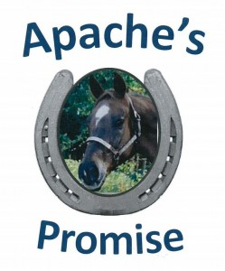 apaches_promise_log