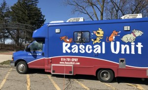 Rascal 2 Wellness Clinic