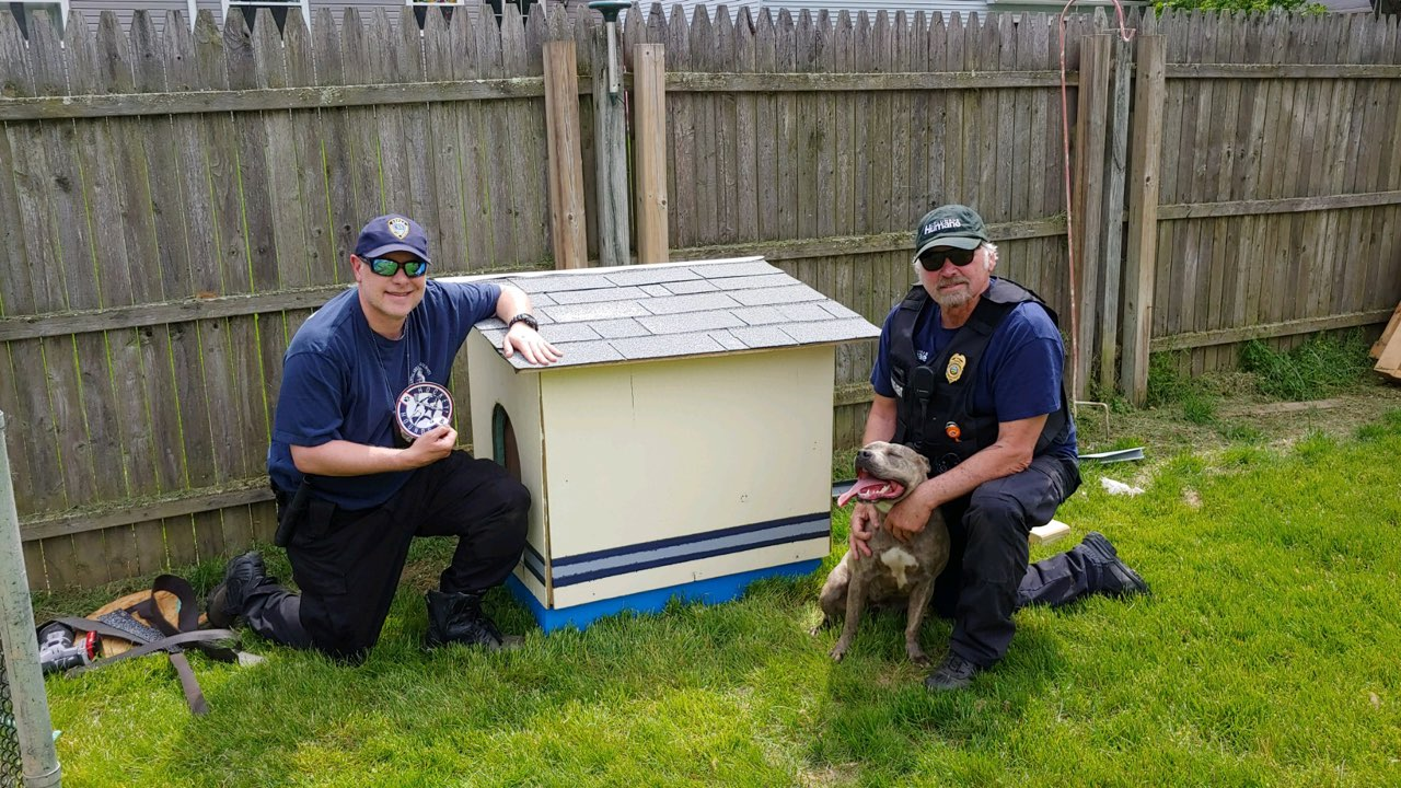 Volunteers Come Together to Build Dog Houses