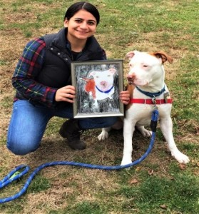 Saved from an abusive situation, Johnny is an example of a dog who benefitted greatly from The Way Home Program.